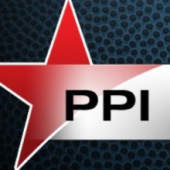 PPI Pic 350
